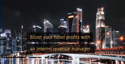Interim revenue manager - interim revenue management 1